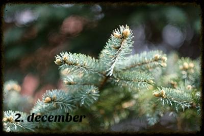 Julekalender 2. december