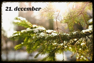 julekalender 21. december
